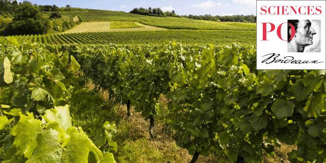 Étude sur la viticulture girondine