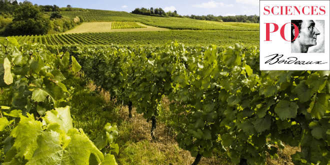 Construction de l'enquête Viti-Bordeaux